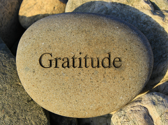 Gratitude Yoga with Erika Khoo